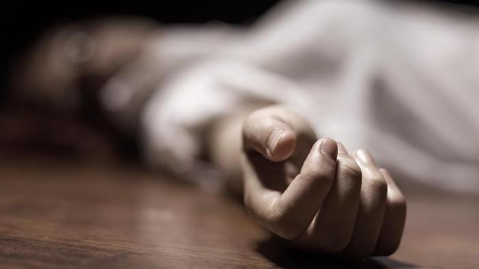 Terungkap! Ilmuwan Temukan Bukti Kutu Jadi Biang Keladi Black Death