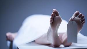 Tewas Dibunuh Asisten, Makeup Artist Alami Luka di Leher dan Perut