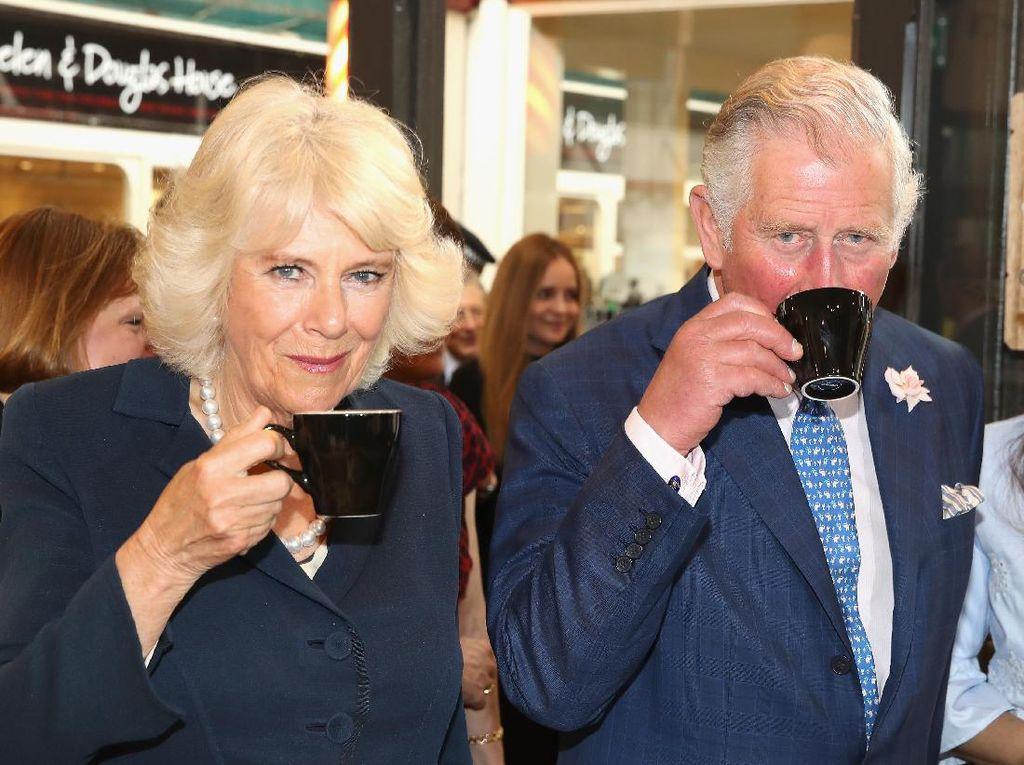 Selalu Dianggap Ibu Tiri Jahat, Camilla Dibela Pangeran Harry