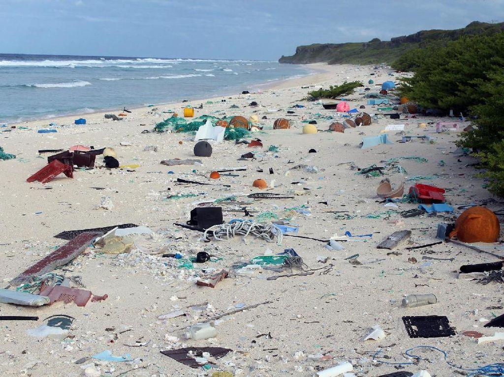 Manusia yang Buang Sampah, Pulau di Samudera Pasifik Jadi Korban