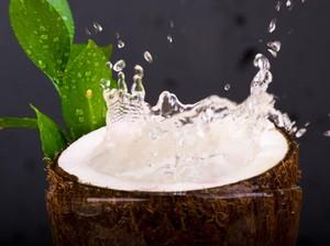 Manfaat Minum Air Kelapa untuk Ibu Hamil
