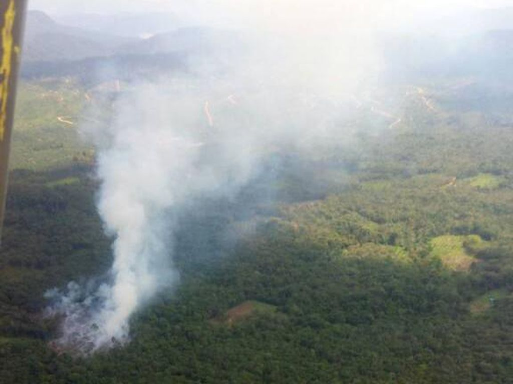 Cuaca Panas, Lahan di Riau Muncul Titik Api