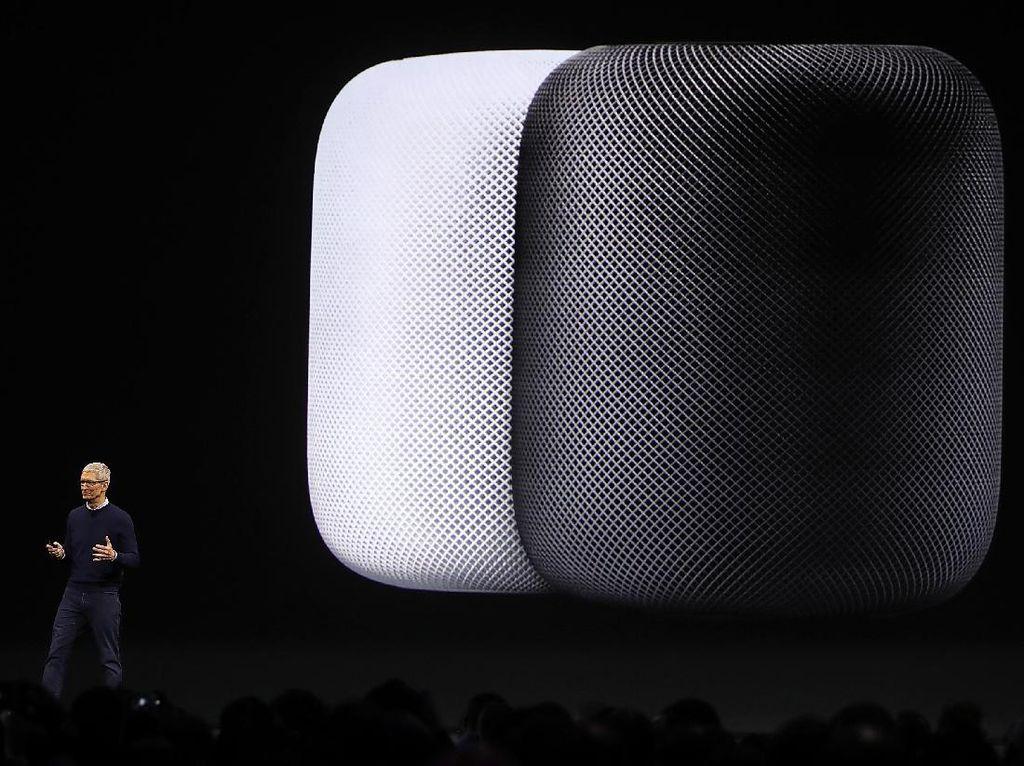 Beredar Kabar Apple Siapkan HomePod Versi Murah