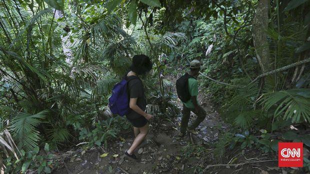 Berada di dalam kawasan Taman Nasional Meru Betiri, lokasi Pantai Teluk Hijau termasuk tersembunyi, tertutup karang curam di kedua sisinya, membuat pantai tersebut hanya bisa dijangkau melalui laut atau jalur darat dengan mendaki bukit dan membelah hutan. CNN Indonesia/Adhi Wicaksono.