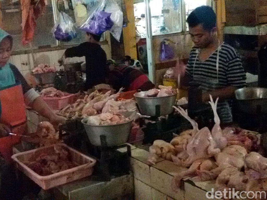 Mau Impor Daging Ayam Brasil, Pemerintah Harus Batasi Peredaran