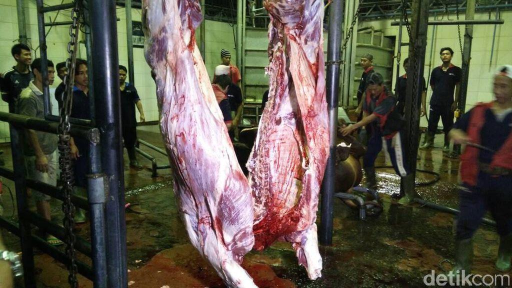 RI Mau Impor Daging Sapi Brasil, Jadikah? Ini Kata Kementan