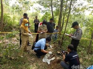 Pencari Kayu Temukan Bayi Baru Lahir Dikubur di Lereng Wilis