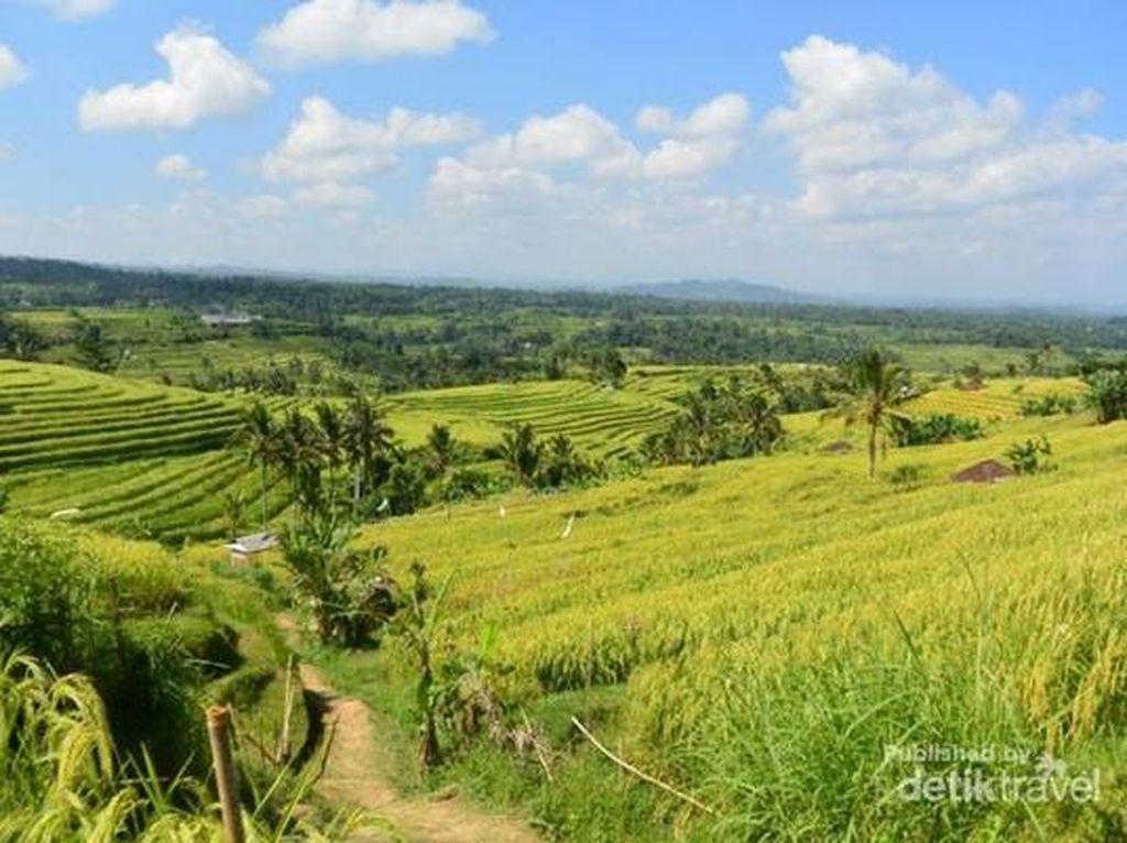 5 Destinasi yang Cocok Buat Generasi Z, Ada dari Indonesia