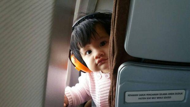 ilustrasi bayi naik pesawat