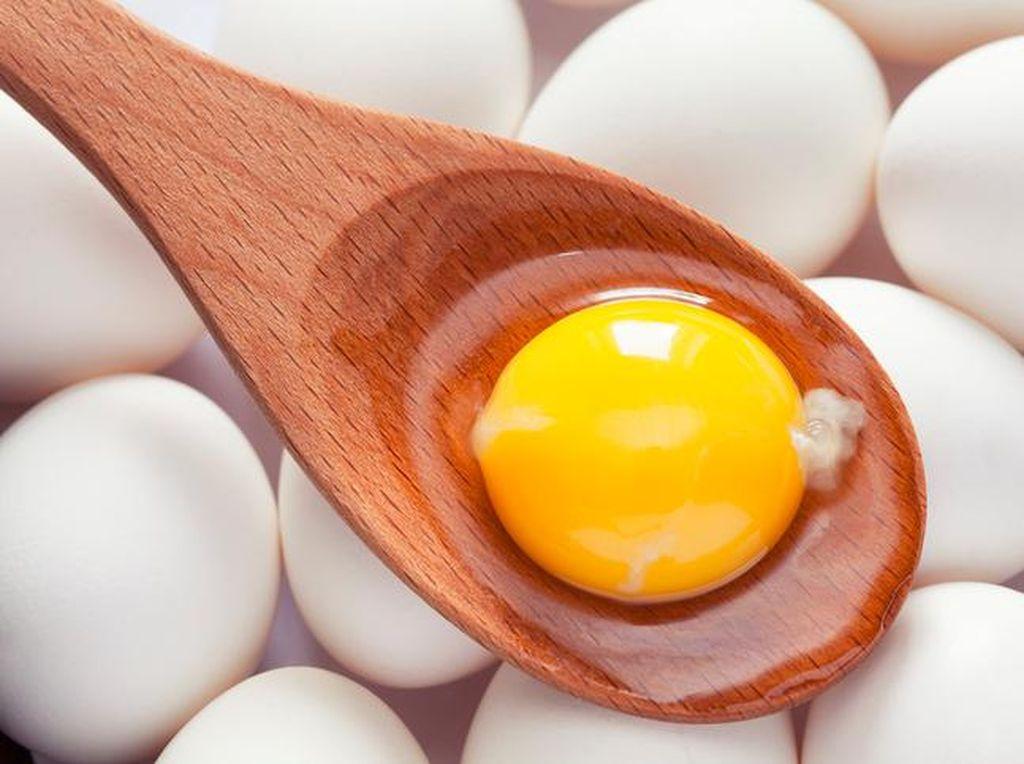 Peneliti Jepang Kembangkan Obat Kanker Murah Dari Telur Ayam