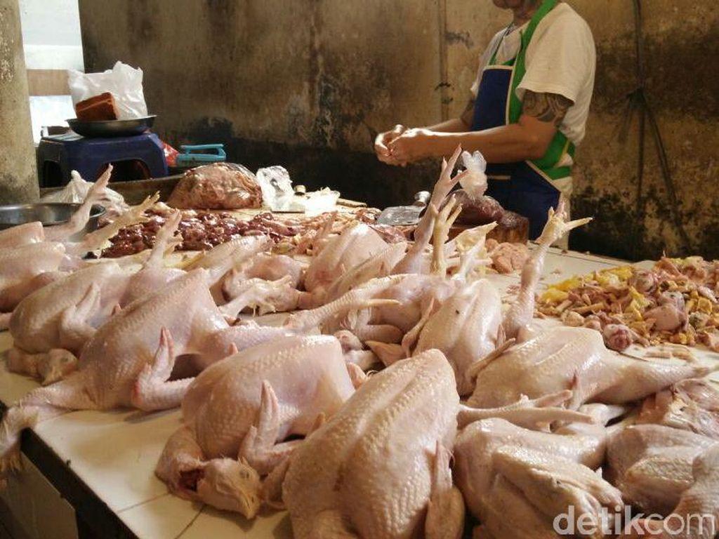 Pemerintah Jamin Daging Ayam Brasil Nggak Bakal Banjiri RI