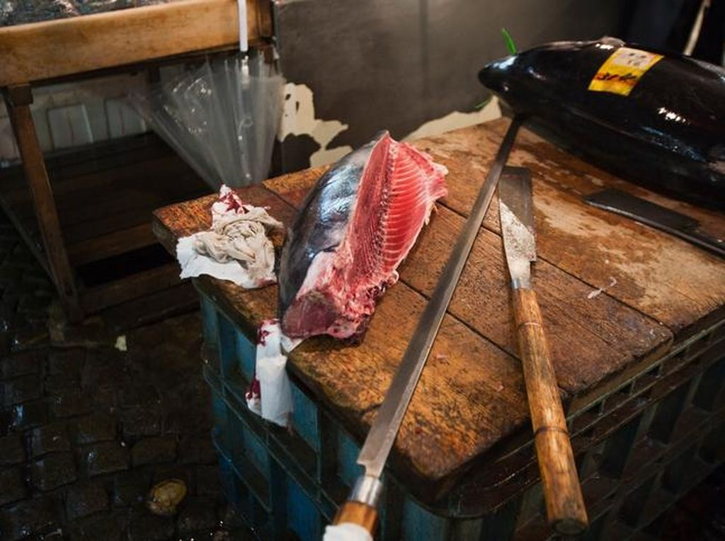 Ngeri! Potongan Daging Ikan Segar Ini Bergerak Walau Sudah Tak Ada Kepala