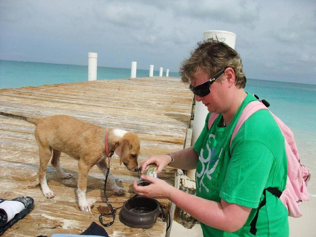 Mungkin Ini Pantai Terbaik Bagi Pecinta Binatang