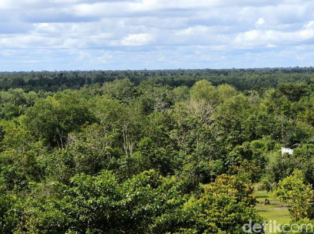 RI Mau Ganti Ibu Kota, Pengusaha: Agar Daerah Baru Bisa Tumbuh