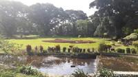 Wisata Kota Bogor Khusus Buka untuk Warga Lokal di Libur Lebaran