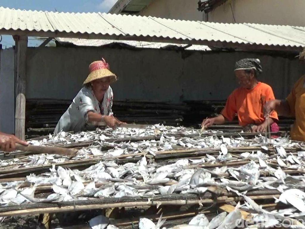 Harga Garam Mahal, Produksi Ikan Asin Turun 50 Persen