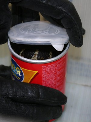 Foto: Isi Kaleng Keripik Kentang Ini Bikin Merinding dan Ngeri