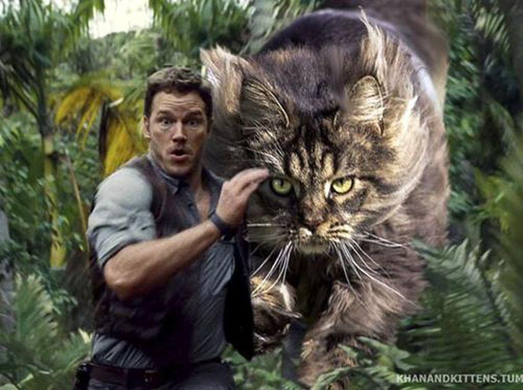 Ketika Kucing Gantikan Dinosaurus di Jurassic Park