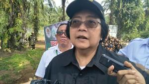 Penjelasan Menteri Siti Soal Titik Kebakaran Hutan yang Meluas