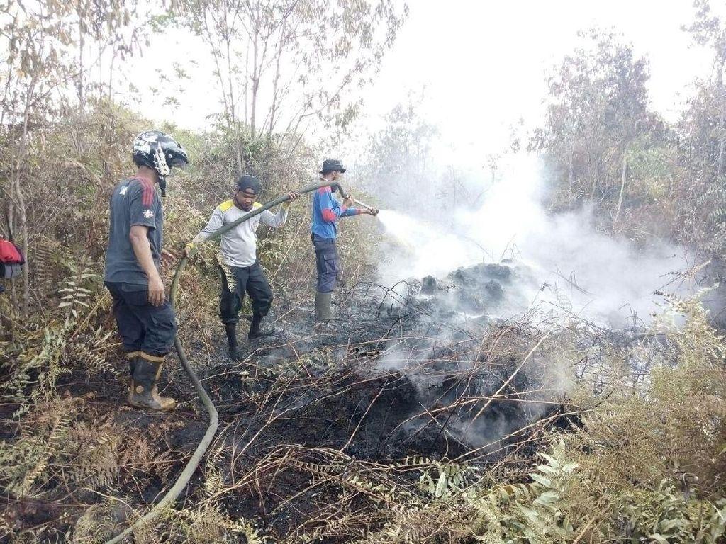 Satgas Karhutla Lakukan Pemadaman Kebakaran Lahan di Siak