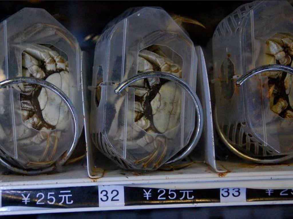 Vending Machine Ini Jual Beras, Kepiting Sampai Kaviar Rp 6 Juta!