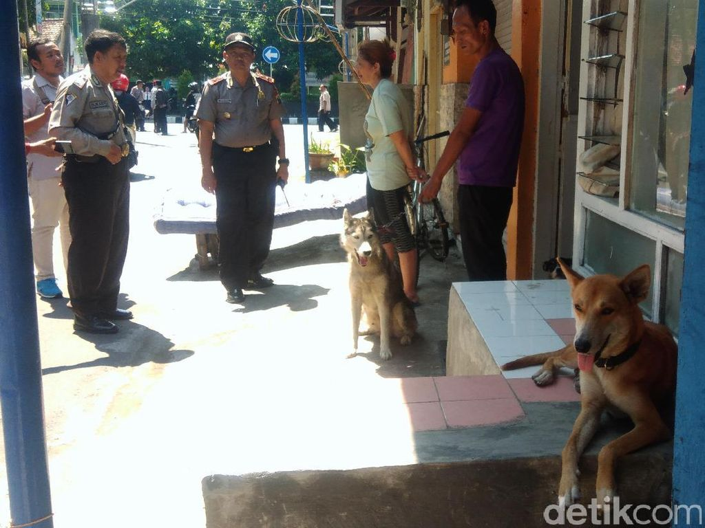Anjing-anjing di Kediri Sering Gigit Warga, Polisi Turun Tangan