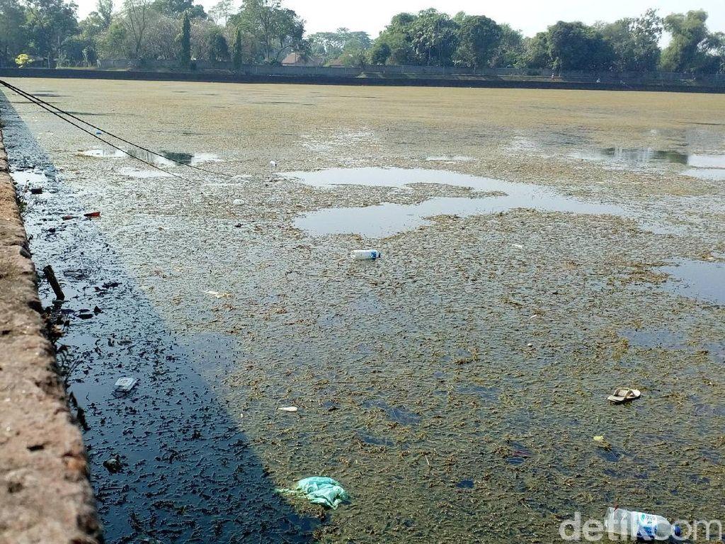 Miris! Kolam Segaran Peninggalan Majapahit Bak Lautan Sampah
