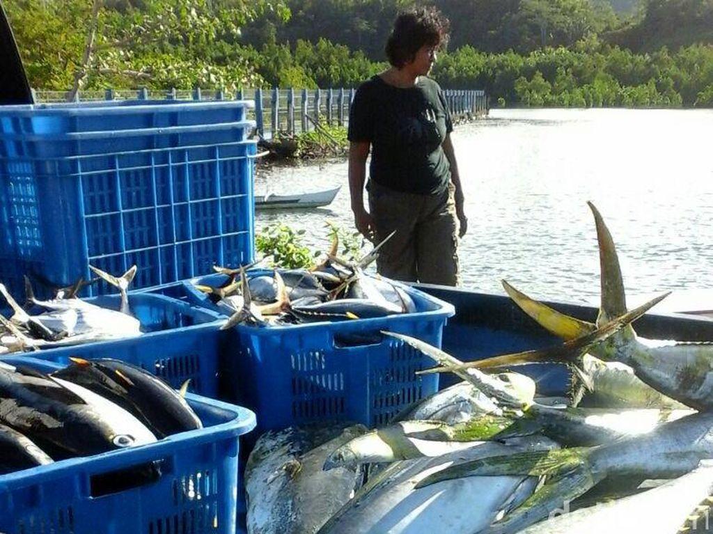 KKP Ajak Nelayan Bikin Harga Jual Tuna Ekspor Makin Tinggi