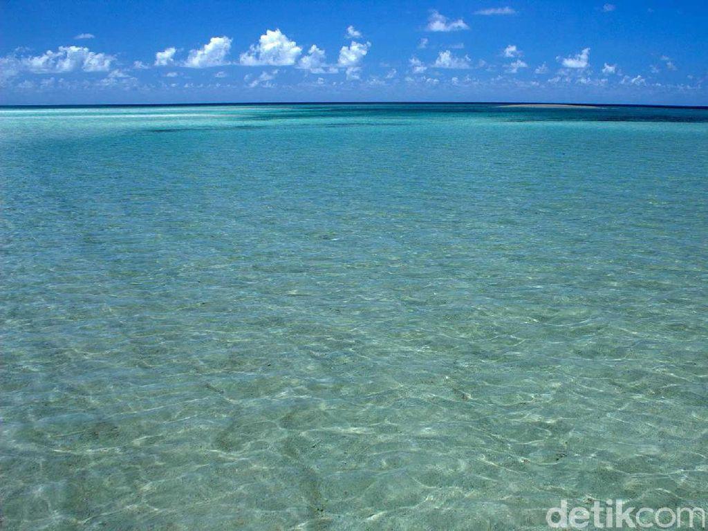 33 WN Sri Lanka Terdampar di Pantai Tureloto Nias