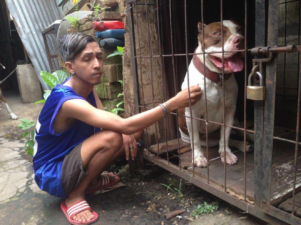 Sejak Dikarantina, Perilaku Anjing Penggigit Ramiza Lebih Banyak Diam
