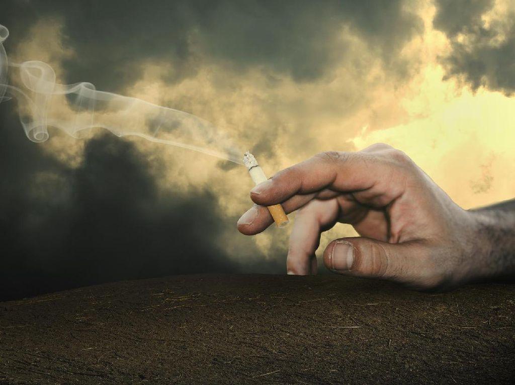 Berbagai Penyebab Kanker Paru di Kalangan Non-perokok