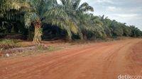 Menelusuri Sumber Data Amien Rais Soal Kepemilikan 74% Tanah RI