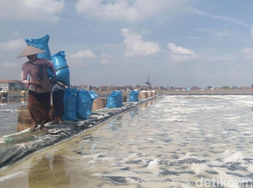 Tolak Impor Garam Industri 3,7 Juta Ton, DPR akan Rapat Gabungan