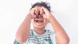 Kisah Viral Ayah dalam Menghadapi Anaknya yang Tantrum