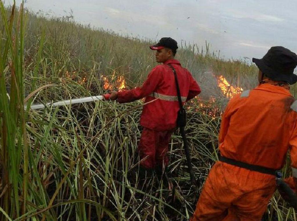 Berjibaku Padamkan Api di Kebakaran Hutan Ogan Ilir