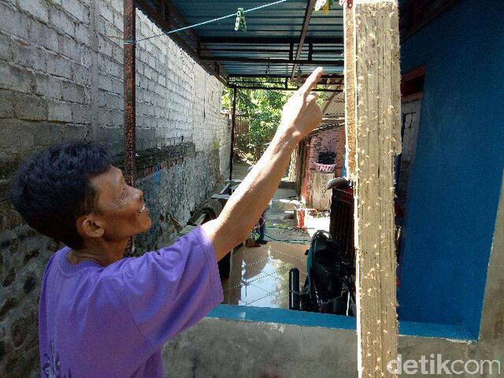 Ulat Bulu Serang Rumah Warga di Banyuwangi