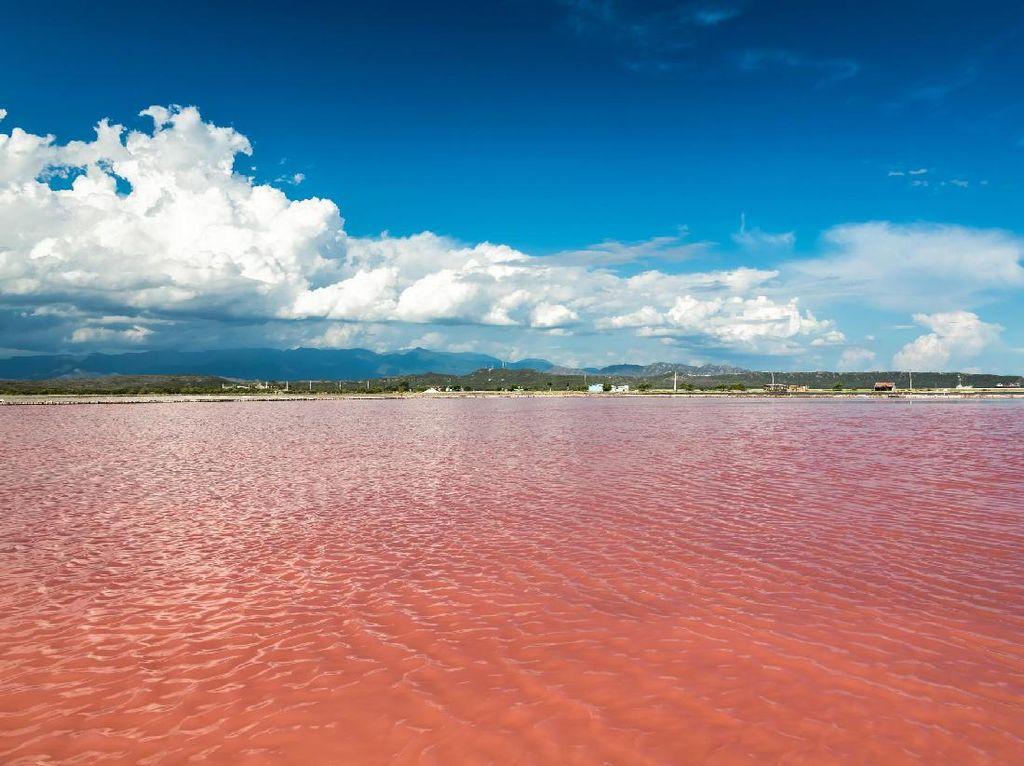 Pernah Lihat Danau Pink Ini?