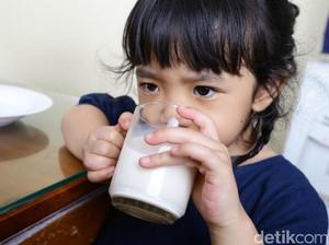 Pertimbangan Saat Memilih Susu Bubuk atau Cair untuk Anak