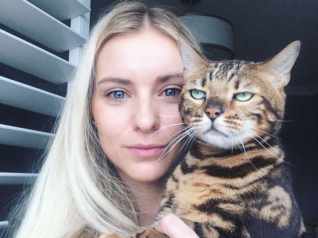 Ekspresi Kocak Ketika Kucing Enggan Diajak Selfie