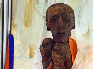 Foto: Mumi 500 Tahun (Masih) Punya Gigi