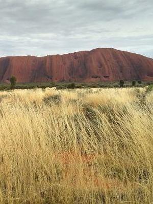 Pengalaman Working Holiday di Tiga Negara Bagian Australia