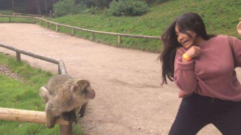 Viral, Traveler Cantik yang Diuber Monyet Galak