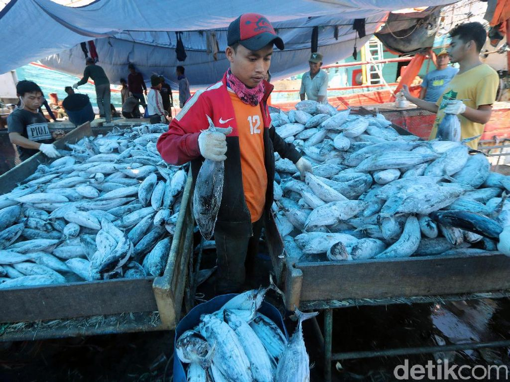 Ini Alasan RI Bangun Pasar Ikan Modern Seperti di Jepang