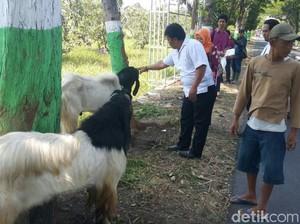 Salep Sakit Mata Dibagikan ke Pedagang Hewan Kurban di Pasuruan