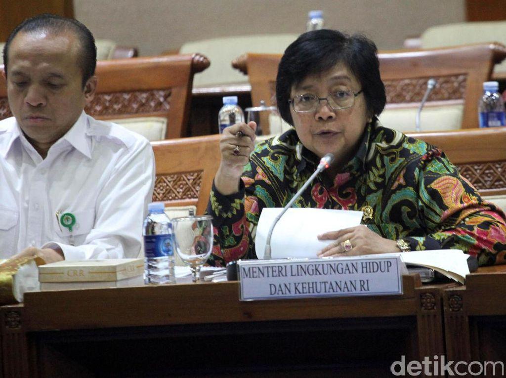 Menteri LHK dan Wamen ESDM Rapat 8 Jam Bareng DPR, Ini Hasilnya