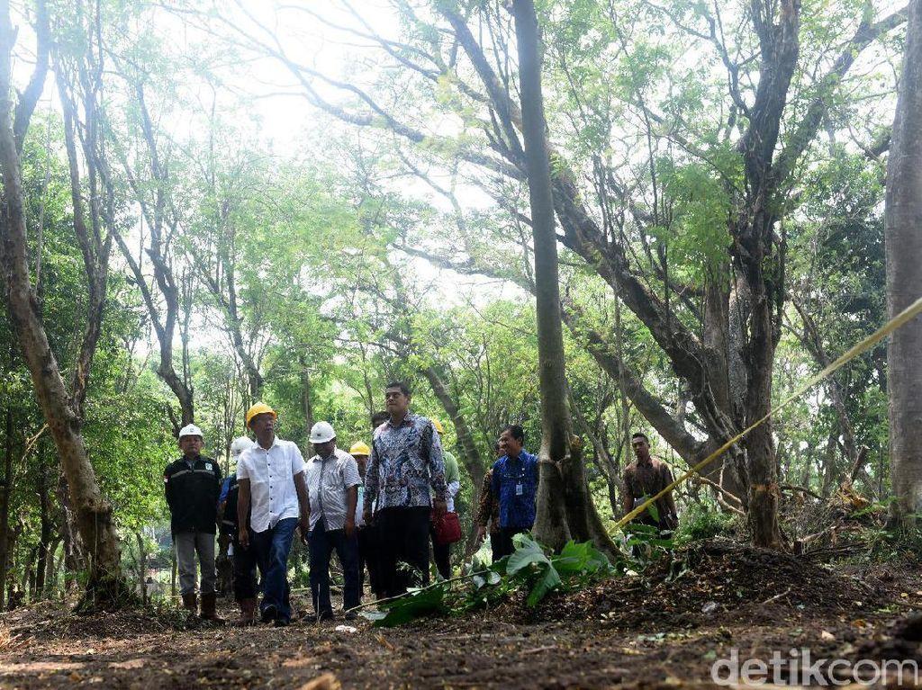 Perbanyak RTH, Pemkot Kediri akan Bangun Hutan Joyoboyo