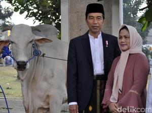 Jokowi Gelar Jambore Peternakan Perebutkan Piala Presiden