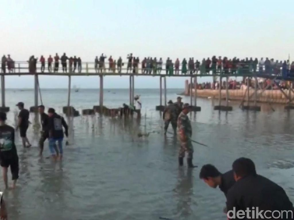 Cegah Abrasi Pantai Kutang, TNI dan Warga Labuhan Tanam Mangrove
