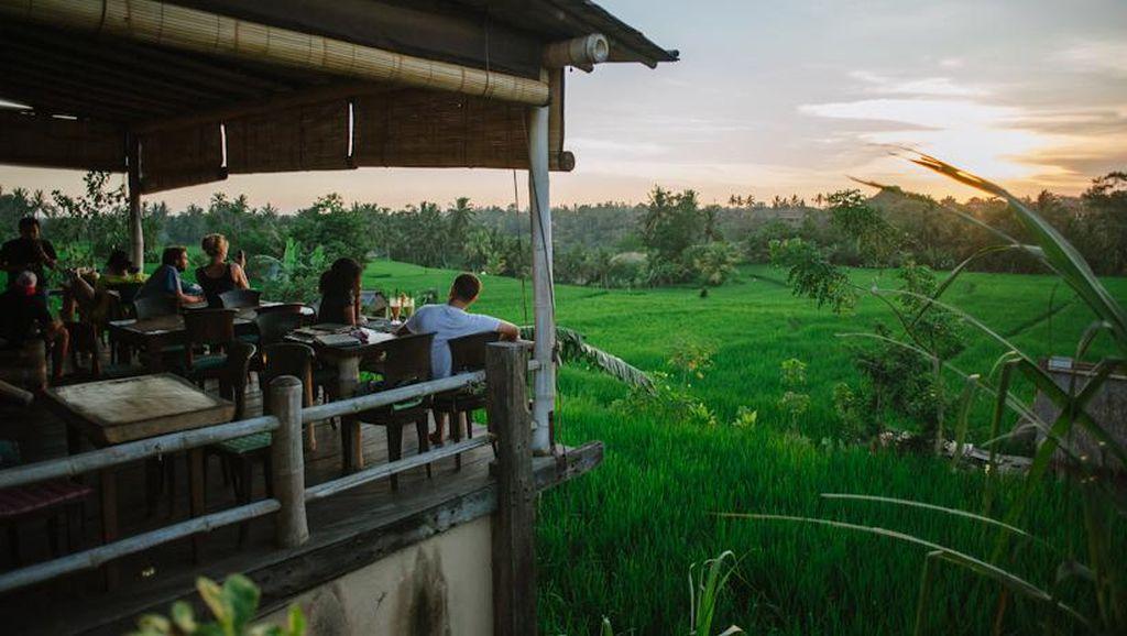 7 Restoran dengan Pemandangan Sawah yang Indah Ini Wajib Anda Datangi!