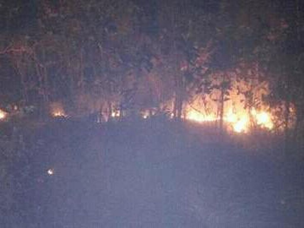 BKSDA Investigasi Penyebab Kebakaran 90 Ha Lahan Gunung Guntur